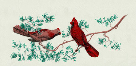 Horizontal Wall Mount Mailbox - Style: Cardinal in Pine