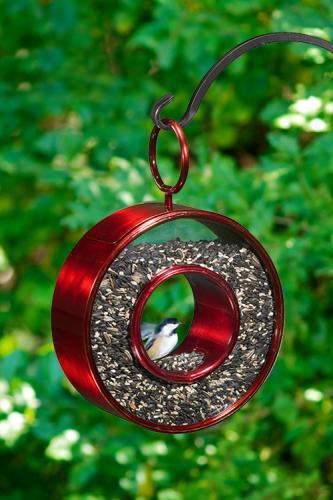 Fly Thru Bird Feeder shown in Ruby Red