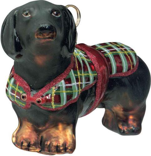 Dachshund Black w/Tartan Plaid Sweater