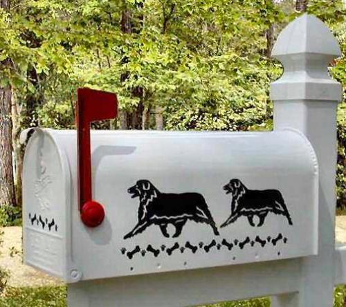 Australian Shepherd Dog Mailbox
