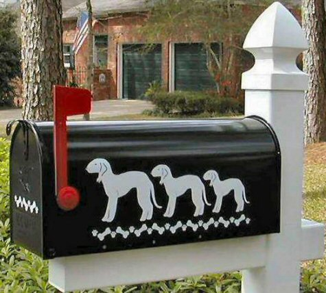 Bedlington Terrier Dog Mailbox