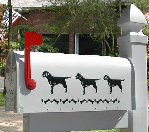 Border Terrier Dog Mailbox
