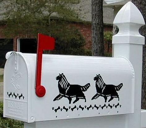 Collie (Rough) Dog Mailbox
