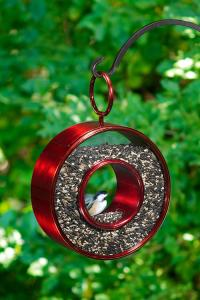 Fly Thru Bird Feeder shown in Ruby Red