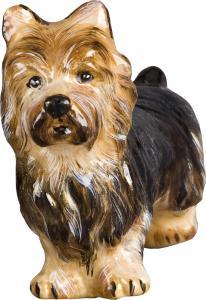 jtw-orn-australian-terrier-3302