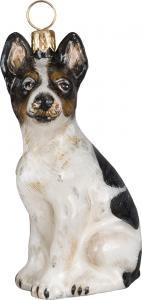 jtw-orn-rat-terrier-3297