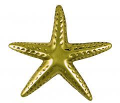 Starfish Premium Size Door Knocker