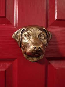 Labrador Retriever Dog Door Knocker