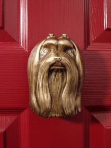 Maltese Dog Door Knocker