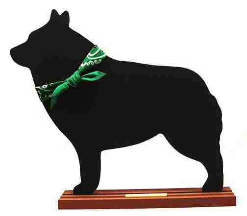 Schipperke Dog Breed Chalkboard